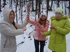 Акция «Зимняя подкормка лесных птиц». Национальный парк «Хвалынский»